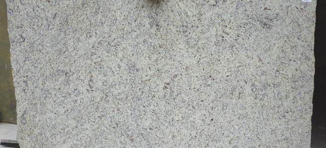 gallo-verona